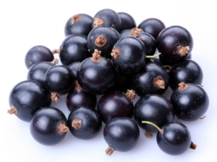 Black currant berries are a very rich source of Anthocyanins.