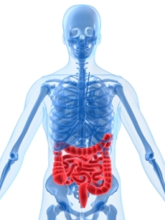 Excess consumption of Omega-6s can lead to ulcerative colitis.